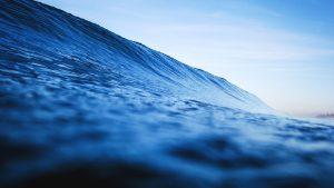 waves jack nourafshan website